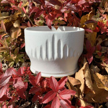 Tea Cups & Yunomis